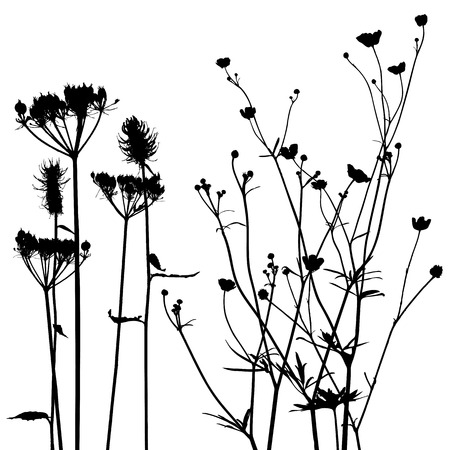 fleurs des champs: collecte pour les concepteurs vecteur usine,