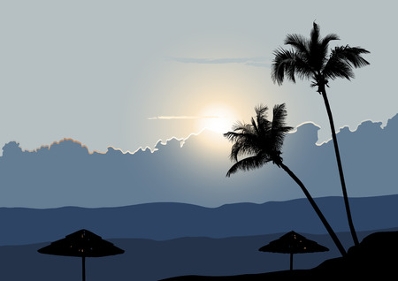 A Tropical Early Morning, Sunrise with Palm Trees  Vector