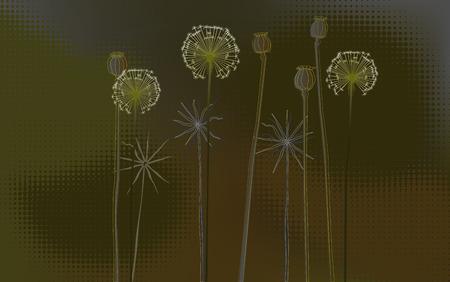 desktop wallpaper: Fondo floral, Poppys y dientes de le�n - papel pintado de escritorio