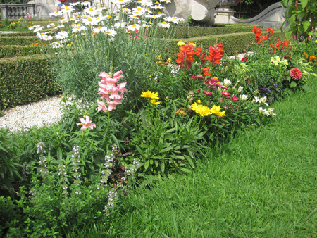 landscaped garden: Flowers. The Summer garden. Plants on colorful landscaped garden. Stock Photo