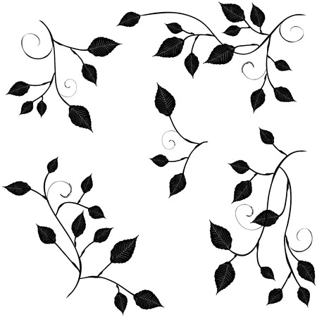 for designers: Collection for designers, branches with foliage - vectors