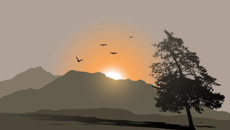 sunrise mountain: Mountain view with flying birds during sunrise
