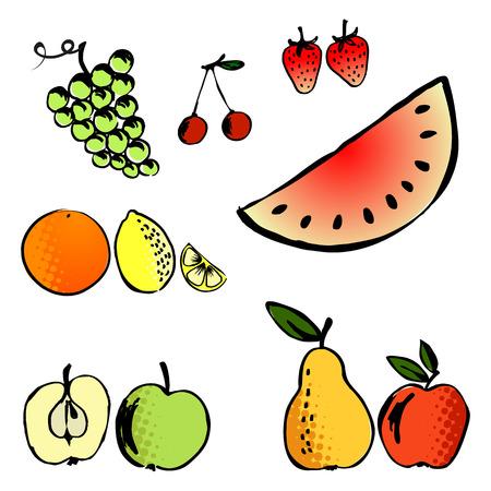 cuatro elementos: ilustraci�n vectorial conjunto de una variedad de frutas - conjunto de cuatro elementos