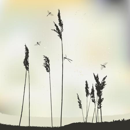 Dragonflies in flight, during sunny day - vector illustration