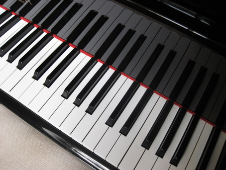 etude: Closeup of piano keys, close frontal view