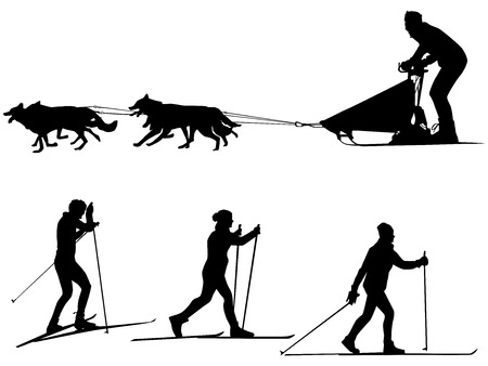 Cross country skiing and dog sledding Sport silhouette Team of dogs