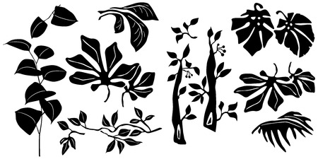 black and white leaf: Black and white Plants silhouettes collection for designers Illustration