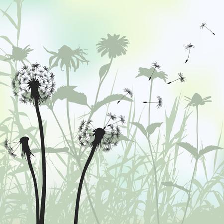Floral background, dandelion 2d vector