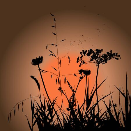 Plants silhouettes on sunset background. Collection for designers.  Beauty of nature. Illustration vector.