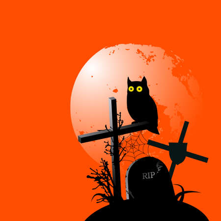 Lone owl. Halloween background with place for your text