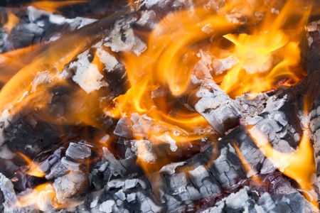 ablaze: Burning Log and red Flame