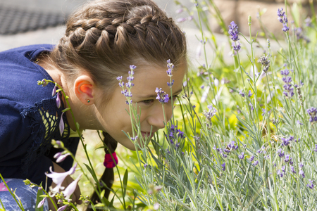 Little beautiful girl sniffing lavender