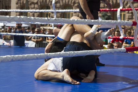 Martial arts. Fight in the ring