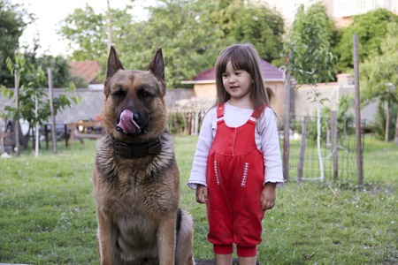 Young beautiful girl with a German shepherd playing on the lawn at the day time