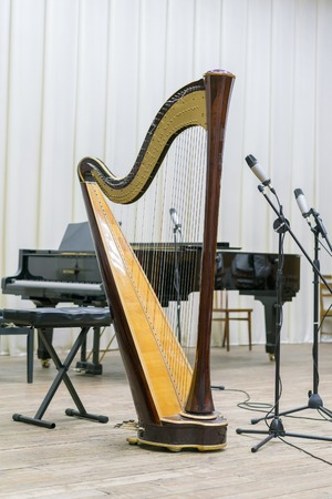 harp on stage. vertical photo Banque d'images - 116209792