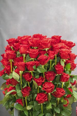 Fresh, natural red roses with green leaves. background. vertical photo. Imagens