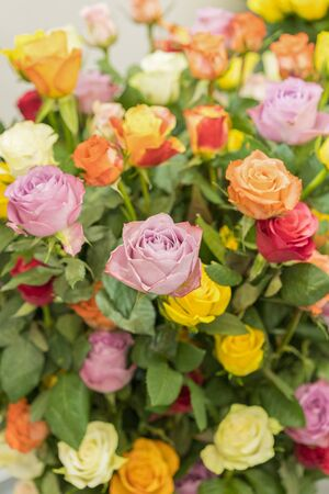 Bright multicolored bouquet of roses. Natural flowers background, soft focus. Colorful roses flower background, group of multicolor rose make from clay, handmade product. vertical photo. Stok Fotoğraf