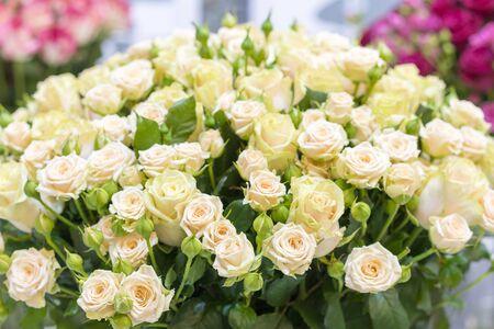 Beautiful wedding bouquet in hands of the bride. beautiful bouquet of roses. Stock fotó - 134656762