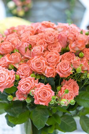 Fresh pink roses. Large, beautiful bouquet of pink roses. vertical photo.
