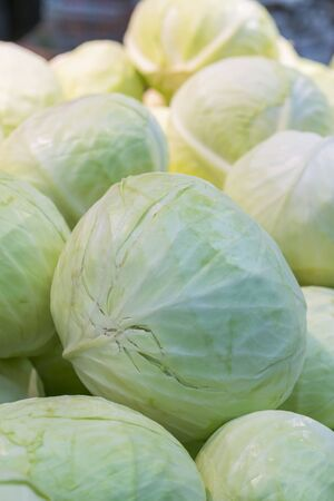 Group of green cabbages in a supermarket as a background, a lot of fresh cabbage at market place from farm field. close-up of fresh white cabbage. Vertical photo. Stock fotó