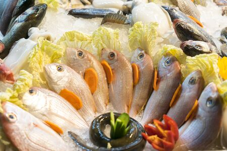 Dorado fish in ice on a showcase. healthy seafood.