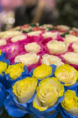 Multi-colored fresh roses. Huge bouquet of roses. vertical photo. Stock fotó