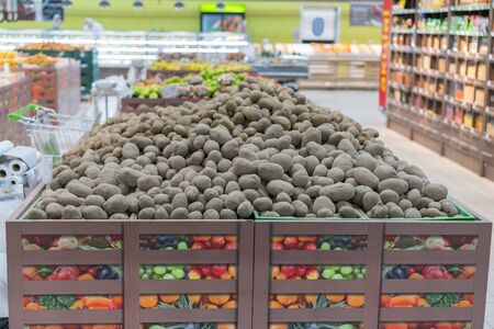 potatoes on a market. Pile of potatoes stored in cellar. Harvest potatoes lies in cellar. Farmers products in the grocery store. Good harvest.