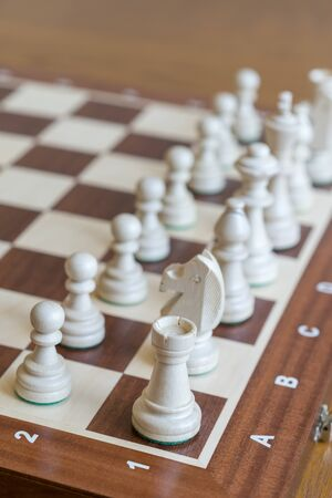 White Chess Pieces on a Chess Board. Vertical photo. Stock fotó