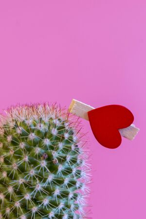 Red heart on a cactus on a pink background. relationship problem stuck with wrong person. The concept of unhappy love. Relationship pain concept. vertical photo. Stock fotó - 138061029
