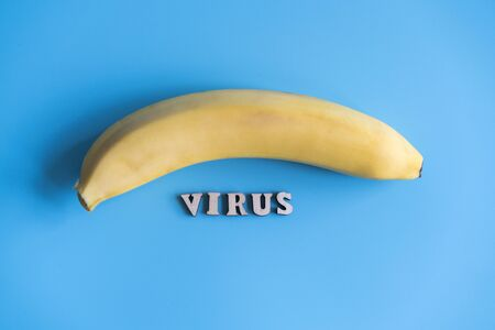 Virus infected banana concept. fruit disease transfer concept. The inscription virus and banana on a blue background.