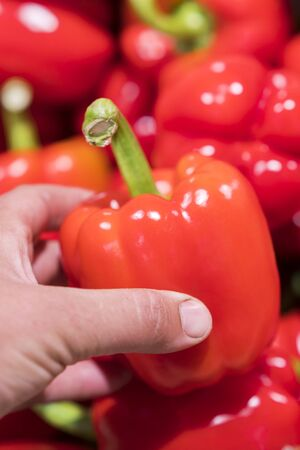 A man chooses red bell peppers in a grocery store, at the market. Hand take the pepper from a vegetable basket. Mans hand is holding Red Bell pepper from supermarket shelf. vertical photo Stock fotó