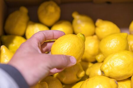 man choosing fresh lemons in supermarket. Mans hand takes a fresh lemon from the food shelf. Organic products. Vegetables and fruits. Healthy food. Shopping in the supermarket