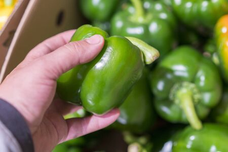 A man chooses green bell peppers in a grocery store, at the market. Hand take the pepper from a vegetable basket. Man's hand is holding Red Bell pepper from supermarket shelf. close-up. 免版税图像