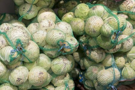 old white cabbage in bags. cabbage in bags at the market. The vendors use the bamboo strips to make a loop for carrying. forks of cabbage in nets harvesting for the winter, farming. 免版税图像