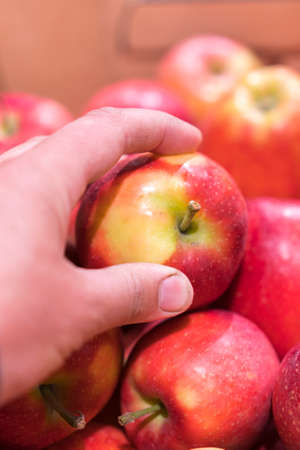 Close up view of fruits shelf in supermarket. hand taking red apples in the store. male hand taking fruit from a shelf. man holds one selected apple in a store or market. vertical photo.