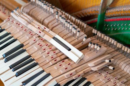 Piano Keys Disassembled. old disassembled piano