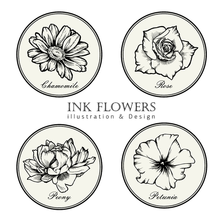 Black ink line style sketch flower. Hand painted flowers set 4 pieces.  イラスト・ベクター素材