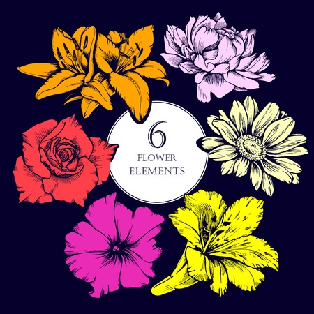 Colorful vector flowers set. Lilly, peony, daisy, petunia, rose.