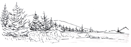 Landscape with a mountain chain and forest. In the foreground there are three tall firs. Hand-drawn linear illustration on paper. Sketch with ink on a white background. Stock Photo