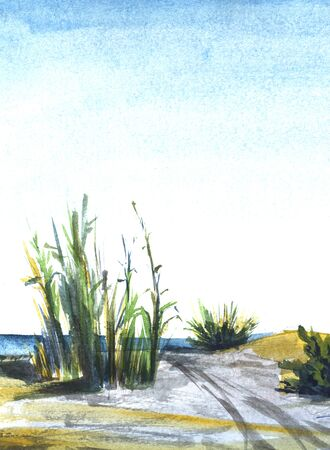 Coastal landscape of tall greenery and lush shrubs growing on sand under shining blue gradient sky. Line of sea is viewed on background. Watercolor hand drawn abstract illustration on paper texture.