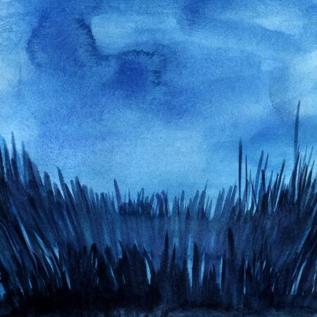 Abstract watercolor background. Dark evening night sky. Thick grass silhouette with glaze. Square format. Hand drawn watercolor illustration.
