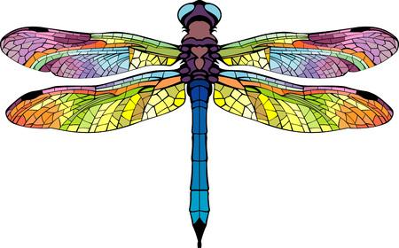gestileerde libelle fel gekleurde kleurrijke mooie vleugels
