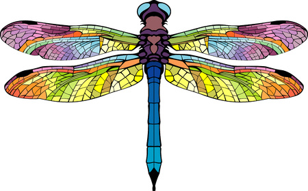 dragonfly wing: stylized dragonfly bright colored colorful beautiful wings