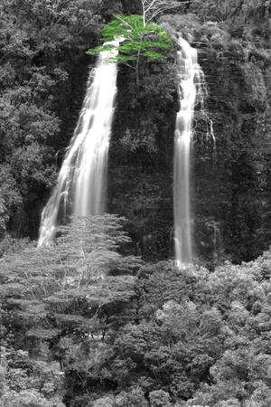 색상 나무와 하와이 카우아이에 Opaekaa 폭포 스톡 콘텐츠