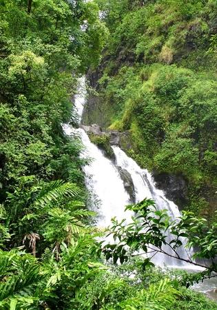 Hana Waterfall 3 photo