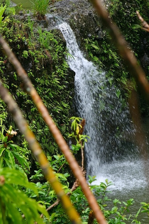 A smaller waterfall on the Hana Highway in Hana, Maui, Hawaii photo