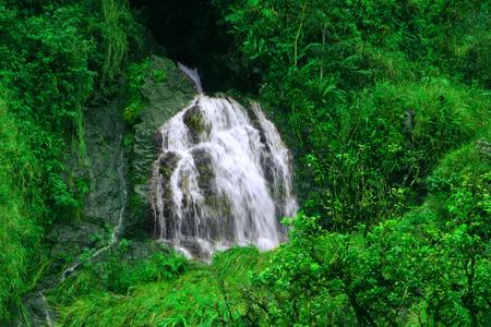 A smaller waterfall on the Hana Highway in Hana, Maui, Hawaii photo