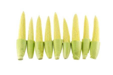 Baby corns isolated on white background photo