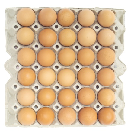 egg box: eggs in the package isolated on white background