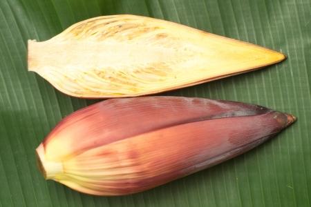 Banana flower on banana leaf photo
